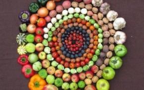 Agricoltura e multifunzionalita'